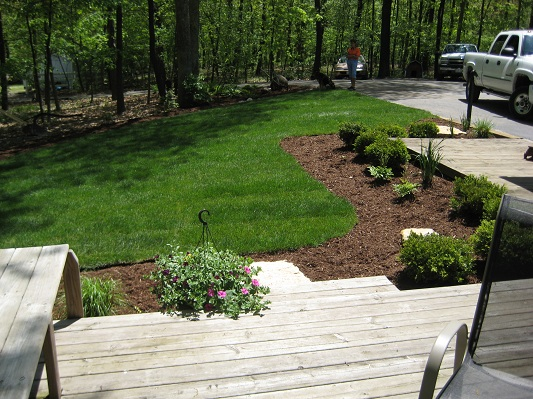 Custom Patio Landscape